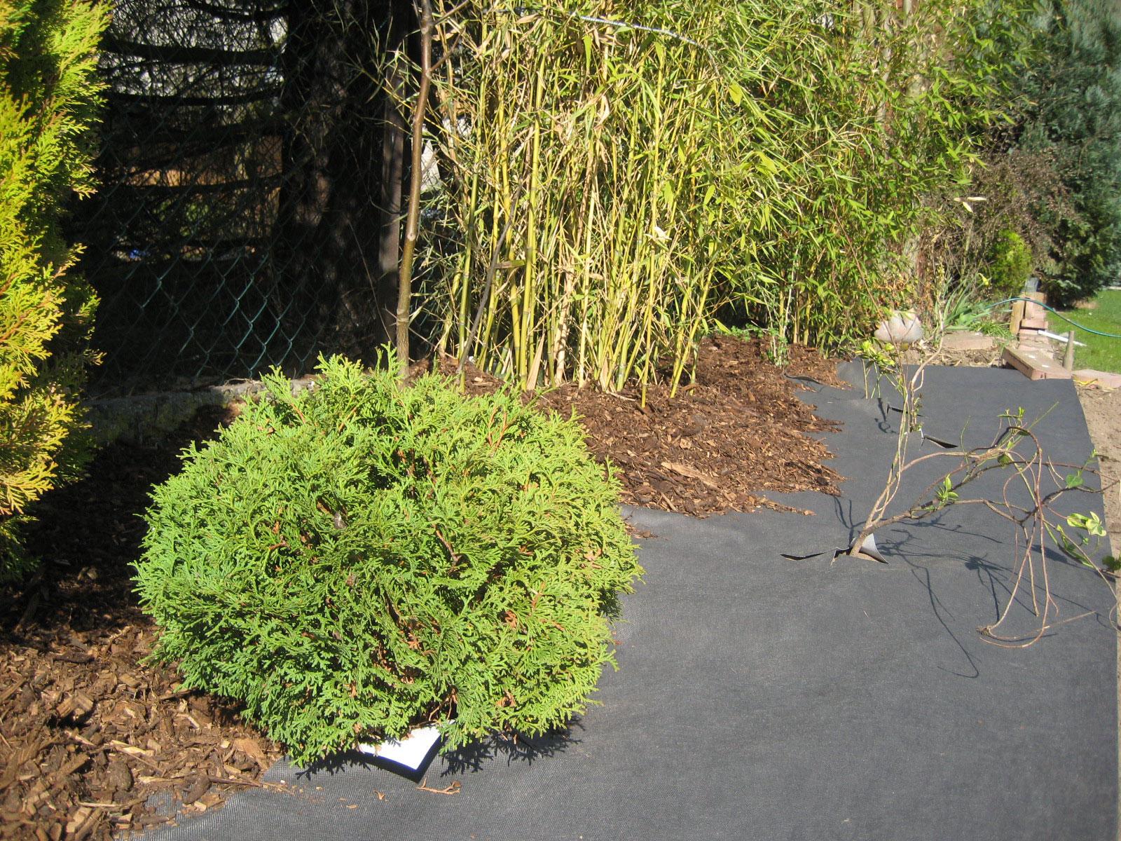 Bau, Garten- und Landschaftsbau